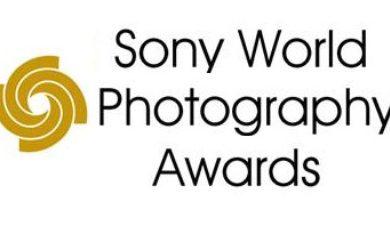 concurso fotografia sony world photography