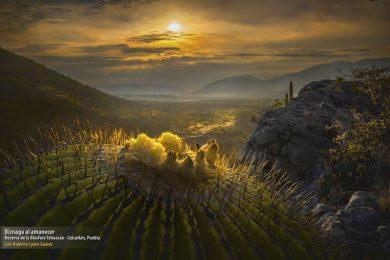 Concurso de Fotografia de Naturaleza