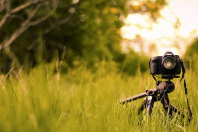 Concurso internacional de fotografía: Naturaleza